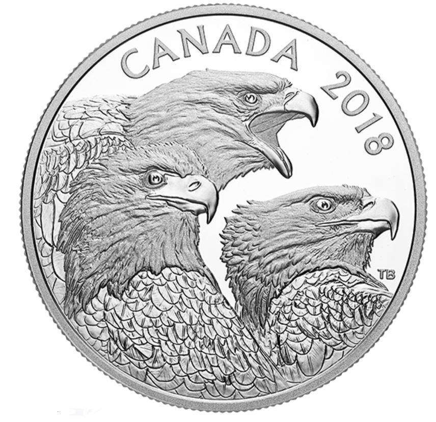 Stříbrná mince Magnificent Bald Eagle 1 oz proof 2018