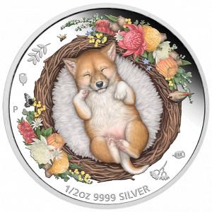 Stříbrná mince Spící mláďata - dingo 1/2 oz proof 2021