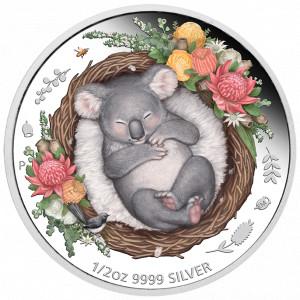 Stříbrná mince Spící mláďata - koala 1/2 oz proof 2021