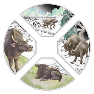 Stříbrná mince Rok Buvola 2021 4x1 oz Proof - kvadrant