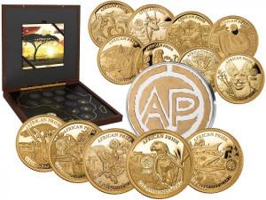 Sada zlatých mincí African Pride 13 x 1/2 g proof 2019