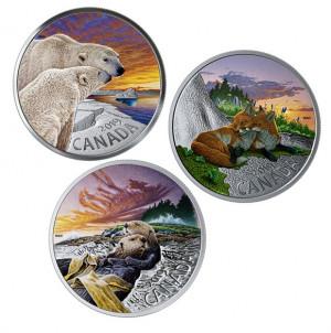 Stříbrná mince Kanadská fauna - Vydra mořská 1 Oz proof kolor 2019