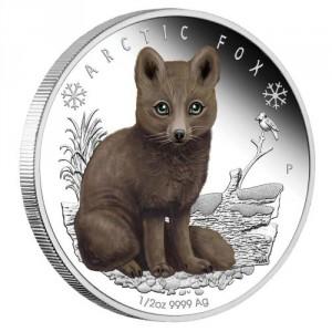 Stříbrná mince Polární Mláďata Polární liška 1/2 oz Proof 2017