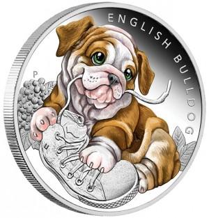 Stříbrná mince Štěňátka Anglický buldok 1/2 oz proof 2018