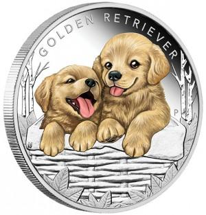 Stříbrná mince Štěňátka Zlatý retrívr 1/2 oz proof 2018