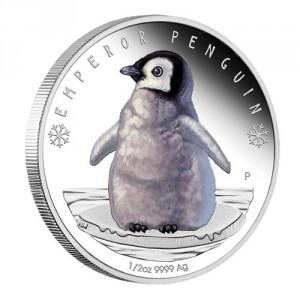Stříbrná mince Polární Mláďata Tučňák 1/2 oz Proof 2017