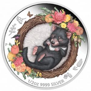 Stříbrná mince Spící mláďata - tasmánský čert 1/2 oz proof 2021
